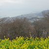 吾妻山公園-189