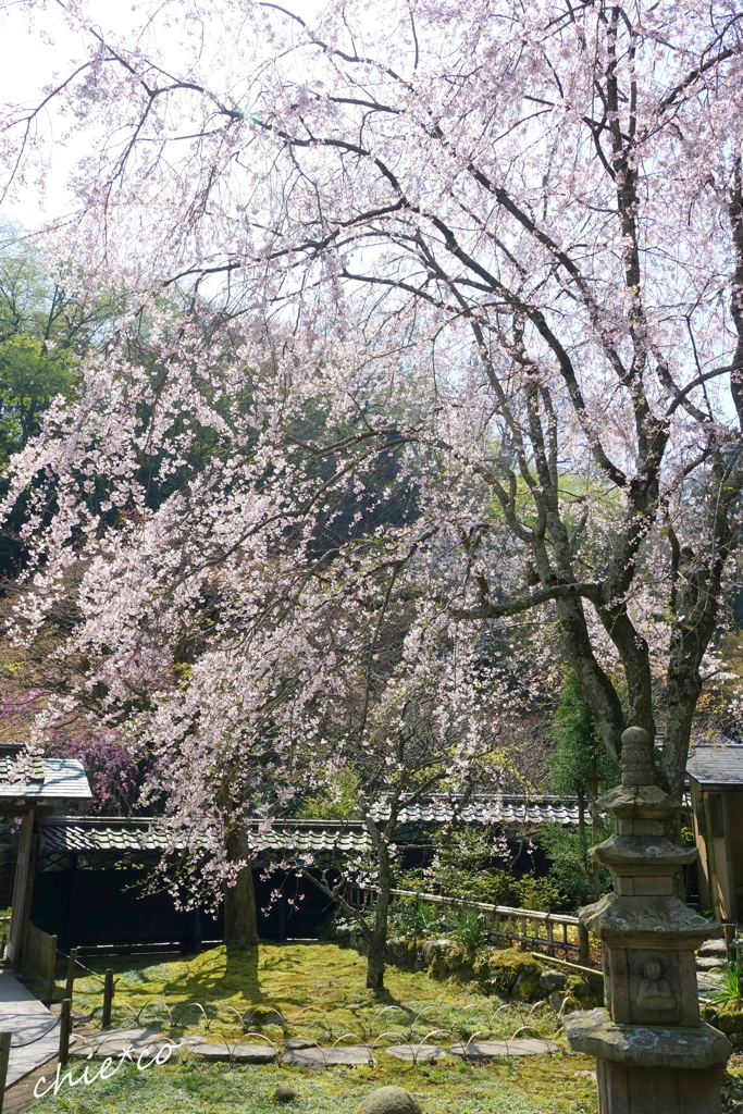 鎌倉-450