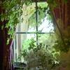 イタリア山庭園-223