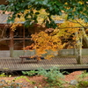 岡田美術館庭園-082