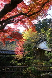北鎌倉-354