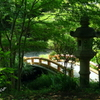 久良岐公園-249