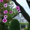 山手イタリア山庭園-330