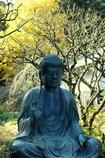 北鎌倉-353