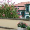 山手イタリア山庭園-268