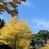 里山ガーデン-251