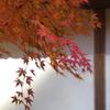北鎌倉-288
