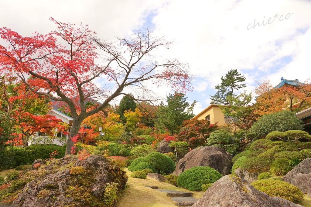箱根美術館庭園-194