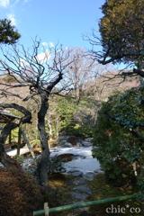 鎌倉-181
