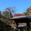 北鎌倉-298