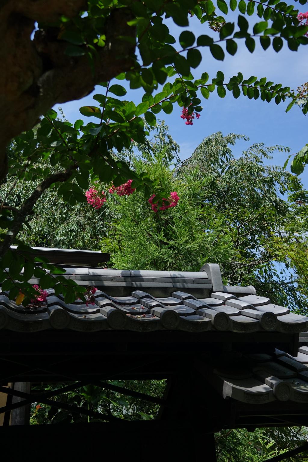 鎌倉-390