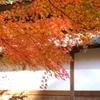 北鎌倉-329