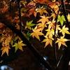 北鎌倉-352