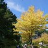 里山ガーデン-243