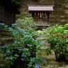 瀬戸神社-294