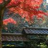 北鎌倉-336