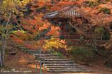 秋の六角亭