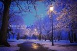 寒さ感じる初冬の朝