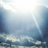 「光の射す方へ‥」
