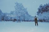 雪。散歩。
