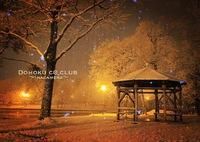 CANON Canon EOS M2で撮影した(orange)の写真(画像)