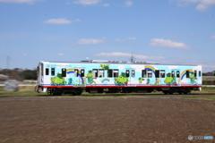 関東鉄道竜ヶ崎線 まいりゅう号