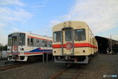 関東鉄道竜ヶ崎線 新旧揃い踏み