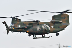 OH-6D