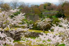 荒城の桜 - 春高楼の  花の宴 -