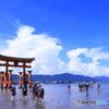 夏の厳島神社