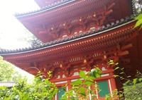 岩船寺(蔵出し)