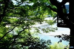 臥龍山荘 茶室からの眺め