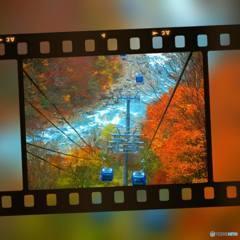 秋色空中散歩