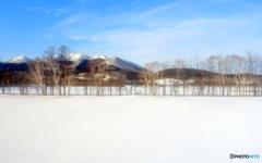 憧れの雪原 ♪