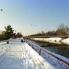 雪の日の散歩 スロバキア