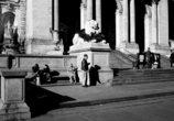 図書館前で日向ぼっこする人 NY