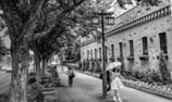 花園のある通り道