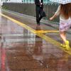 黄色は私の通り道 ?