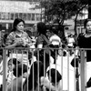 フィリピンのアマさんの休日 セントラル 香港