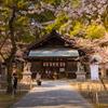 通りすがりの神社