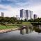 日本庭園から高層ビルを眺める