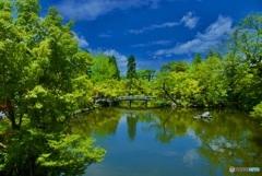 永観堂 放生池と錦雲橋