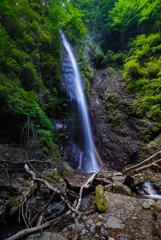 白糸の滝 (山梨県小菅村)