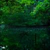 丸池様の湧水(山形県遊佐町)