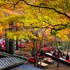 高雄の秋<神護寺の茶店>