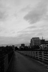 台風前のひと時1