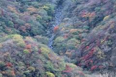 赤城山(黒檜山)からの眺望③