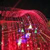 クリスマスの夜in昭和記念公園