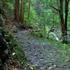 滝へ向かう石畳