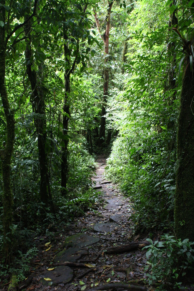 Trail, Costa Rica